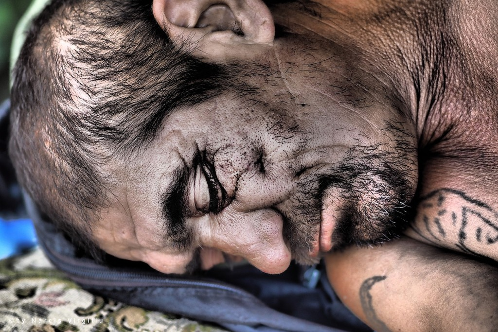 Moments of Truth – Small portraits of some big sleepy guys © Photography by Narcis Virgiliu
